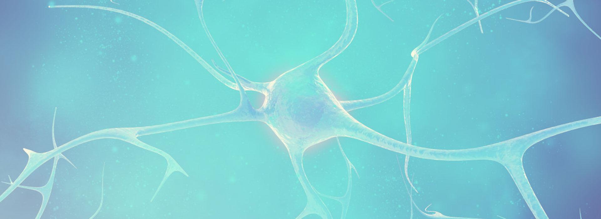 人体微生物